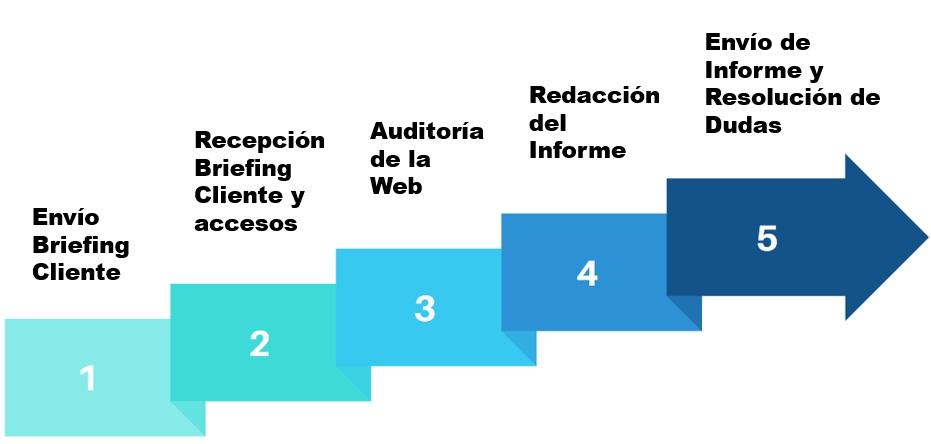 pasos en una auditoria seo web